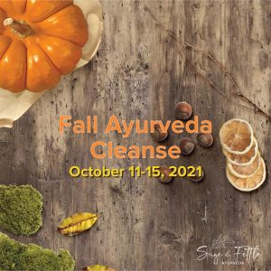 Product Image Fall Ayurveda Cleanse with Sage & Fettle Ayurveda and Angelina Fox, ERYT500, YACEP, Ayurveda Health Counselor and Yoga Teacher